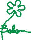 BEHEM recyclage