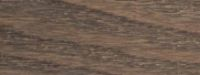 Frêne rouvre clair